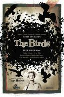 Birds v3